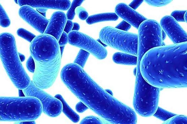 """Chuyên gia tiết lộ tác dụng """"vàng"""" của lợi khuẩn Bifido đối với bệnh viêm đại tràng - 1"""