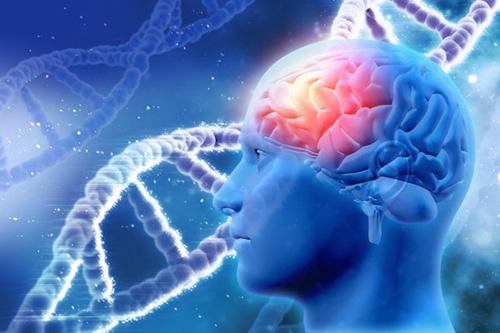 Những nguy cơ xấu về sức khỏe khi có biểu hiện suy giảm trí nhớ - 2