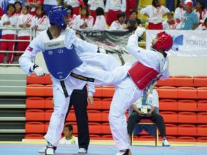 Taekwondo SEA Games 29