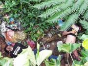 Philippines: Tìm thấy nhiều thi thể dân bị IS chặt đầu