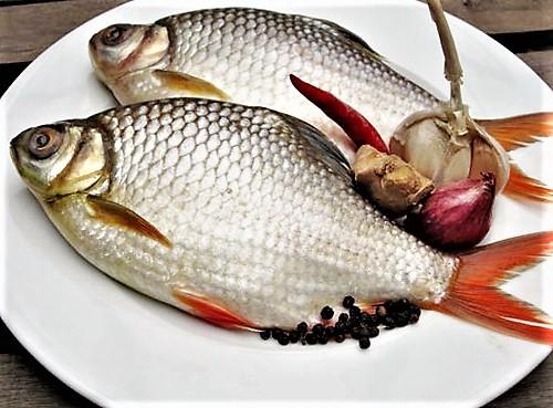 Cá he kho lạt, món ăn dân dã khó quên - 2
