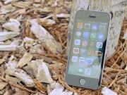"""Chiếc iPhone  """" cổ lỗ sĩ """"  này có những điểm ăn đứt iPhone 7"""