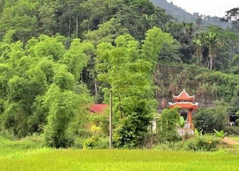 Những thiên đường xanh ngát xanh không thể bỏ qua khi đến Thái Nguyên - 3