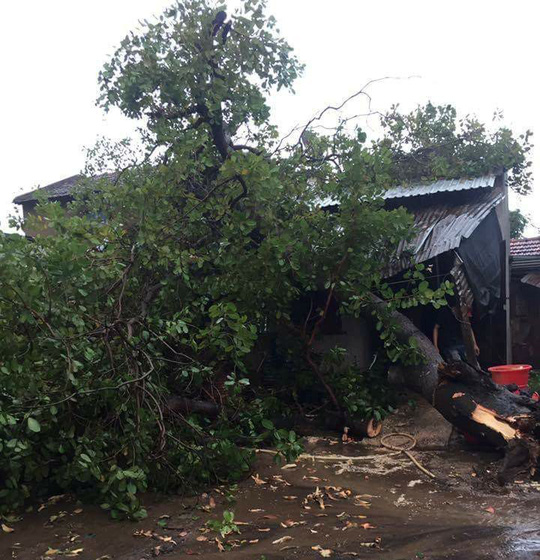 Mưa đá, lốc xoáy khiến hàng trăm ngôi nhà sập, nhiều người bị thương - 1