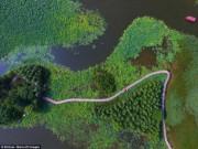 Du lịch - Lạc giữa hồ hoa sen đẹp mê hồn ở Trung Quốc