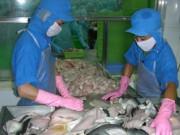 Thị trường - Tiêu dùng - Cá tra sắp được giao dịch trên internet