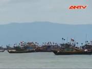 Video An ninh - Ngư dân nói gì sau công bố nguyên nhân cá chết?
