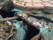 Tin tức trong ngày - HN: Sở GTVT thông tin vụ bê tông cốt xốp trên cầu vượt