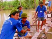 Giáo dục - du học - Sinh viên tình nguyện cũng cần học kỹ năng