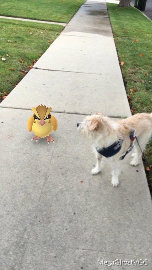 """1001 tình huống xuất hiện """"khó đỡ"""" của Pokémon - 4"""
