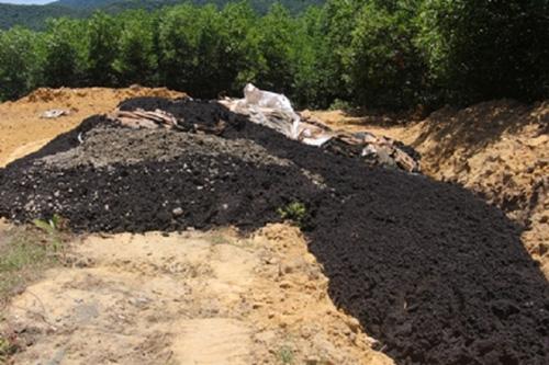 Trang trại xin 100 tấn chất thải Formosa để... bón cây?