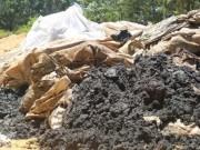 Tin tức trong ngày - Chất thải Formosa chôn ở trang trại: 267 tấn chứ không phải 100 tấn