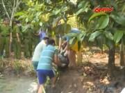 Video An ninh - Phạm nhân tự thú giết người, chôn xác sau 2 năm