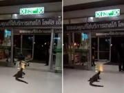 Thế giới - Thái Lan: Thằn lằn khổng lồ vào siêu thị hóng mát
