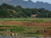 Tài chính - Bất động sản - Hàng loạt công ty nông, lâm nghiệp thua lỗ ngàn tỉ đồng