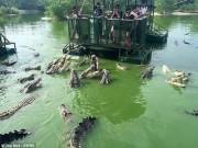 Du lịch - Rợn người du khách TQ dùng bè tạm bợ cho bầy cá sấu ăn