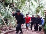 Tin tức trong ngày - Khởi tố, bắt giam thêm 8 đối tượng vụ phá rừng ở Lâm Đồng
