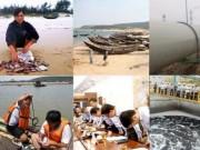 Tin tức trong ngày - Chính phủ đánh giá thiệt hại sự cố cá chết do Forrmosa gây ra