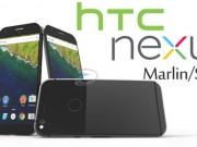 Dế sắp ra lò - HTC Nexus Marlin lần đầu lộ ảnh thực tế