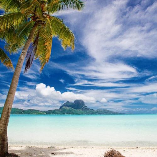 Bí mật ngạc nhiên về thiên đường nhiệt đới Bora Bora - 9