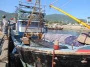 An ninh Xã hội - Phát hiện thi thể có vết dao đâm trôi dạt trên biển
