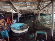 Tin tức trong ngày - Nguyên nhân ban đầu gây sập nhà hàng nổi ở Ninh Thuận