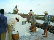 Thị trường - Tiêu dùng - Muối ế trắng đồng, kho dự trữ hoang phế