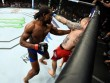 UFC:  Mưa đấm  dằn mặt lính mới xăm trổ