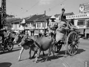 Thế giới - Hội Tam Hoàng: Một thời vùng vẫy trên đất Việt