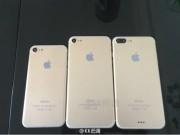 Dế sắp ra lò - Bộ 3 iPhone 7, 7 Plus và 7 Pro xuất hiện cùng lúc