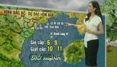 Dự báo thời tiết VTV 27/7: Bão số 1 hướng vào Quảng Ninh, Nam Định