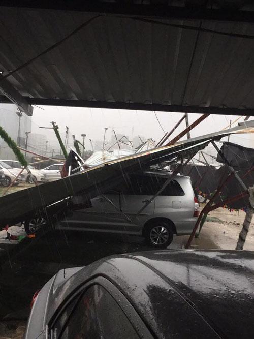HN: Gió giật cực lớn, cây đổ ngổn ngang do bão số 1 - 7