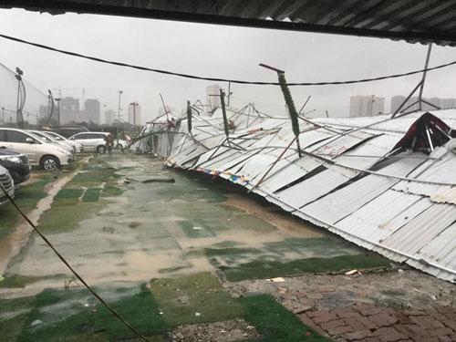 HN: Gió giật cực lớn, cây đổ ngổn ngang do bão số 1 - 13