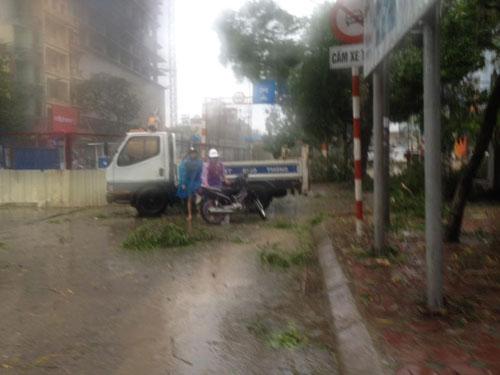 HN: Gió giật cực lớn, cây đổ ngổn ngang do bão số 1 - 19