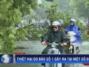 Video An ninh - Thống kê thiệt hại do bão số 1 ở miền Bắc