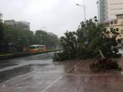 Tin tức trong ngày - Xuất hiện vùng áp thấp mới đang mạnh lên thành bão số 2
