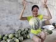 Thị trường - Tiêu dùng - Kỳ lạ: Dưa hấu Trung Quốc nảy như bóng cao su khi ném