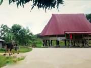 Du lịch - Một ngày về làng của người Cơ Tu ở Đà Nẵng
