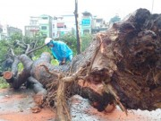 Tin tức trong ngày - Hà Nội ra công điện khẩn ứng phó bão số 2