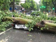 Tin tức trong ngày - Dự báo bão sai: Những thông tin giật mình