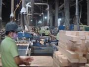 Thị trường - Tiêu dùng - Gỗ Trung Quốc bị tố đội lốt, chèn ép doanh nghiệp Việt