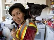 Thế giới - Bà cụ Việt Nam ở Mỹ quét rác nuôi 3 cháu khôn lớn