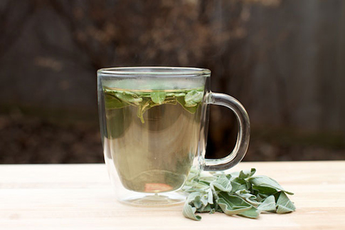 Top 5 loại nước trà giúp bạn giảm cân hiệu quả - 5