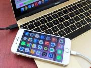 """Công nghệ thông tin - iOS 9.3.4 đã khắc phục lỗi """"ngốn"""" RAM trên iPhone"""