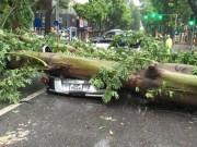Tin tức trong ngày - Việt Nam còn hứng chịu bao nhiêu cơn bão trong năm nay?