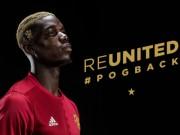 Bóng đá - CHÍNH THỨC: Pogba ký hợp đồng 5 năm với MU