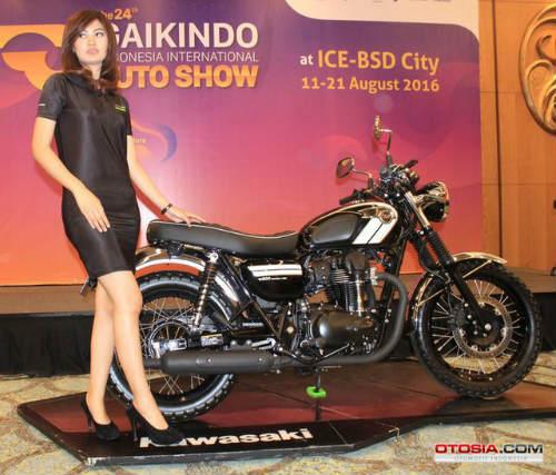 Ra mắt Kawasaki W800 giá 423,5 triệu đồng - 2