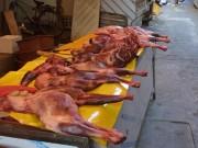 Thế giới - Triều Tiên khuyến khích dân ăn thịt chó để chống đói