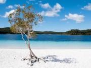 """Du lịch - 10 bãi biển """"chết chóc"""" đáng sợ nhất thế giới"""