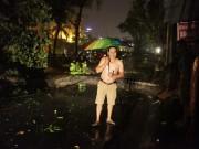 Tin tức trong ngày - Hà Nội: Mưa dữ dội, ngập lụt, cây đổ vì bão Thần Sét